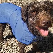 Cooling Coat