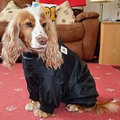 Indoor Drying Coat